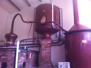 cognac-alambic-charentais