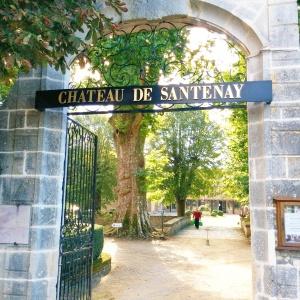 Château de Santenay, la porte