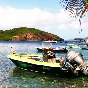 bateau pelican les Saintes