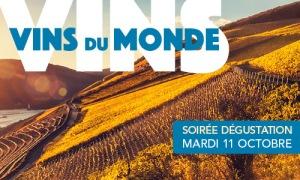 banniere-500x300-sd-vdm-10-16-ok